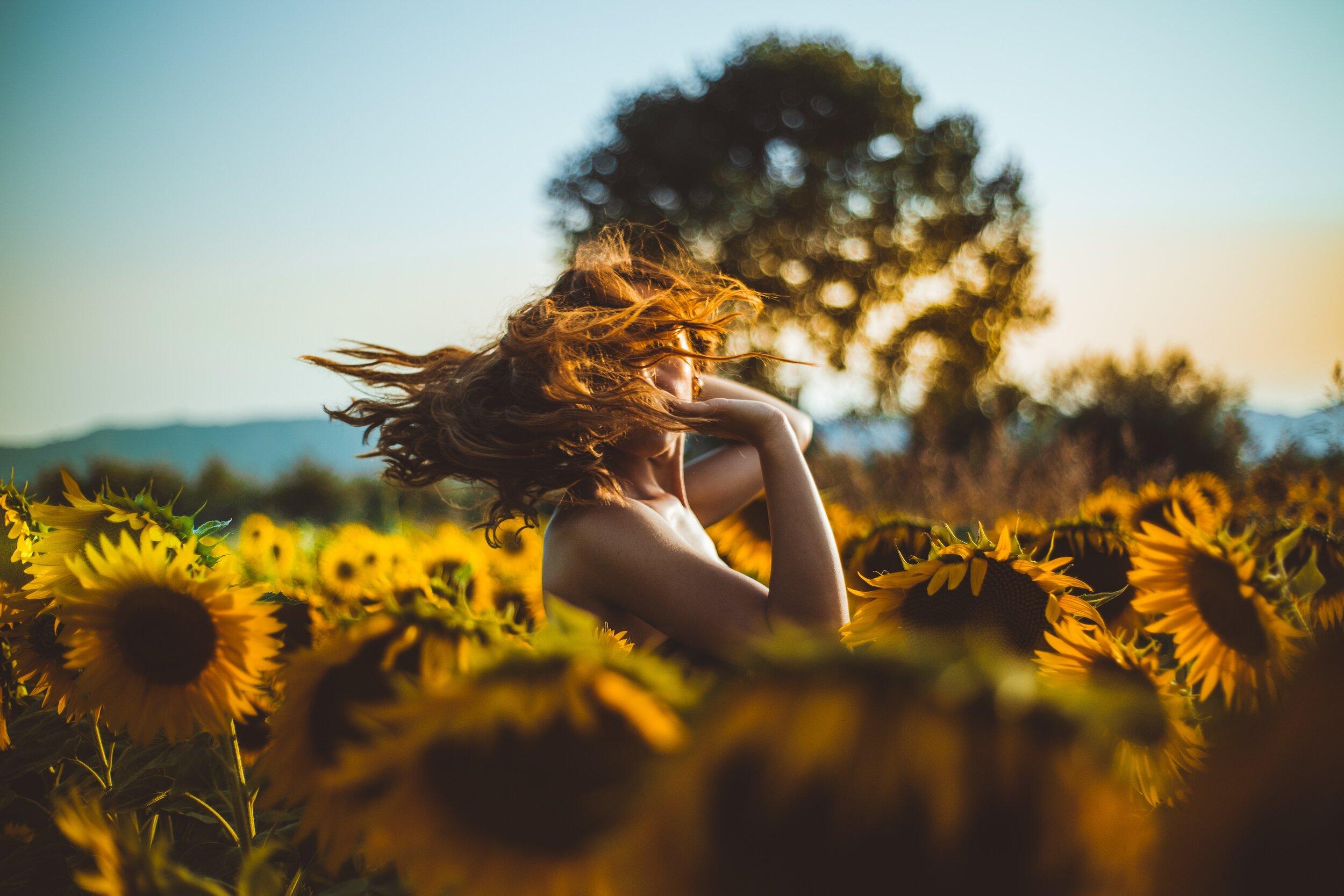Sunflower Living: A Poem